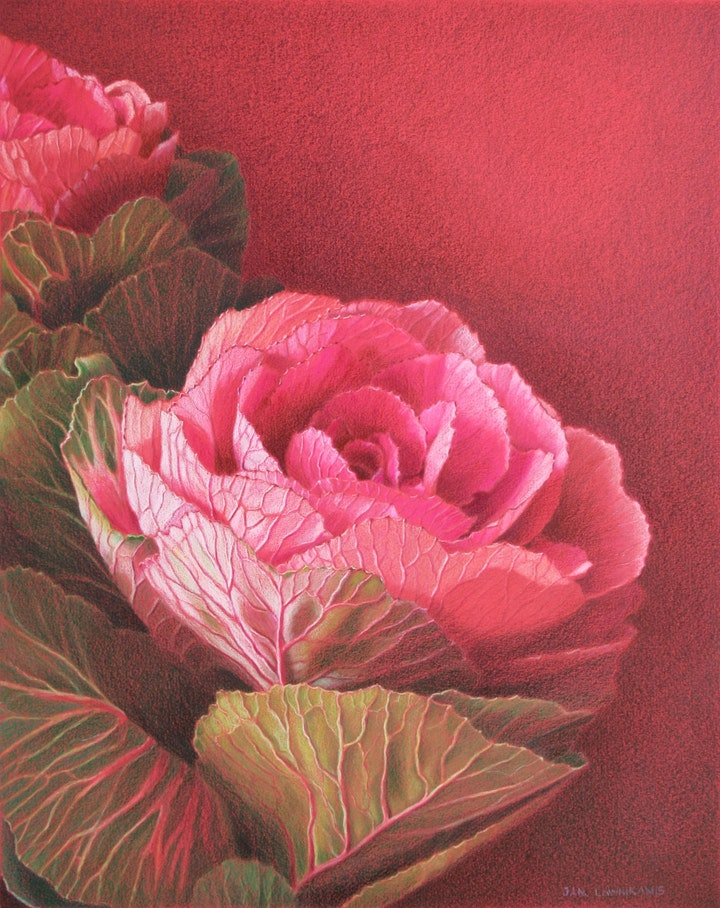 Explore the Possibilities - Colour Pencils with Jan Lawnikanis (2 Days) image