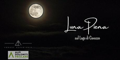 Luna piena sul Lago di Cavazzo tra boschi e stavoli biglietti