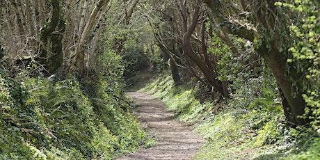 Chulmleigh Friends of Devon Wildlife - A New Wildlife Group for Chulmleigh tickets