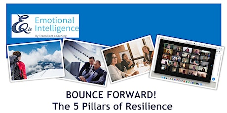 Network Ireland Meath Presents 5 Pillars of Resilience tickets