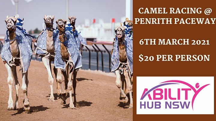 Camel Racing @ Penrith Paceway NDIS Applicants can come - Ability Hub NSW image