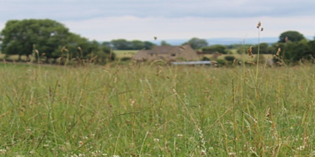 Land use and management for NFM: Exploring Landwise project evidence tickets