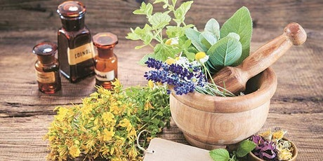 Medicinal Plants and Herbs for Spanish Interpreters tickets