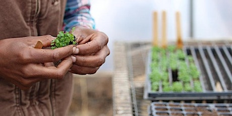 Vermont BIPOC Farmers and Growers Listening Session tickets