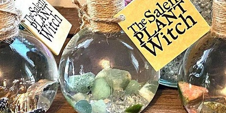 Marimo Intention Bottles Creation Session tickets