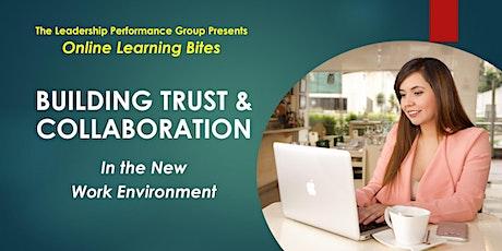 Building Trust & Collaboration (Online - Run 13) tickets