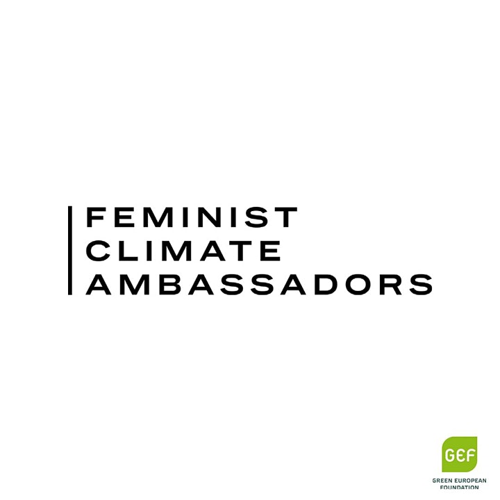 Climate, gender and economics Webinar for the General Public image