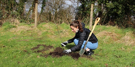 Hero's Haven Project - Tree Planting (Cardiff Met Students) tickets