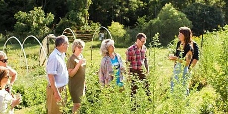 Garden Tour & Tea Tasting with Ashley Hoffman tickets