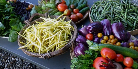 Benefits of Plant-Based Diet tickets