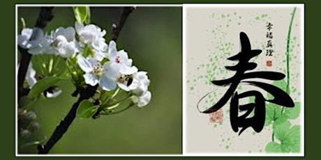 Qigong Spring Protocol Seminar and Workshop tickets