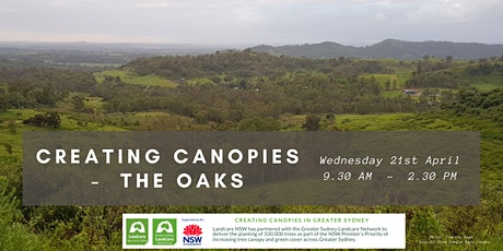 Creating Canopies at The Oaks with WSDR Workshop tickets