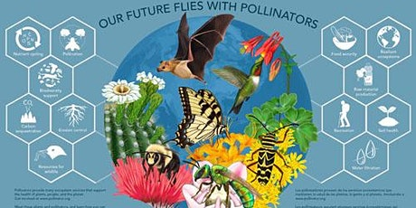 Planting for Pollinators: Matching Pollinators to their Plants tickets