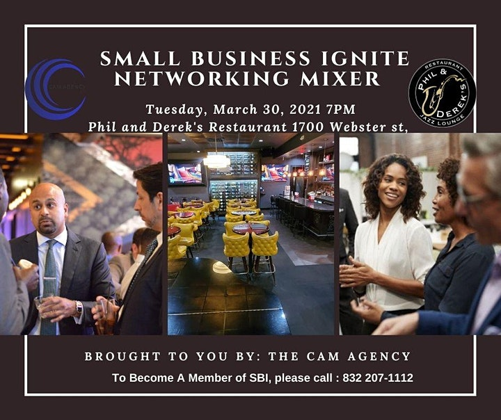 Small Business Ignite -Networking Event image
