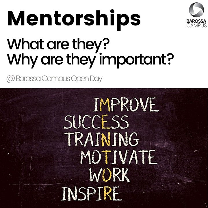 Mentorships - What are they and why are they important? image