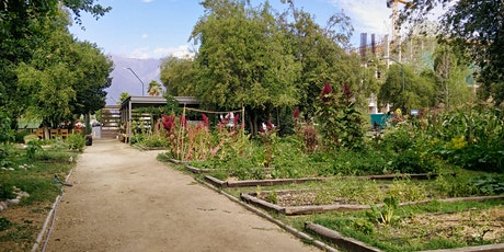 Resistance and empowerment: stories of urban agriculture in Santiago tickets
