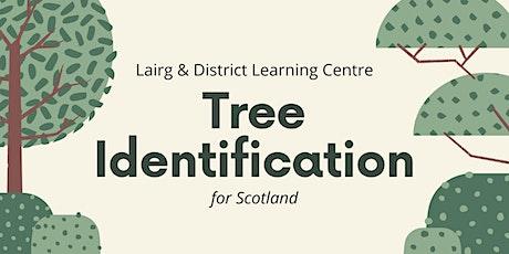 Summer Tree Identification - Scotland tickets