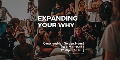 ConsciousNet: Expanding your 'Why' tickets