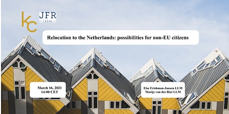 Relocation to the Netherlands: possibilities for non-EU citizens tickets