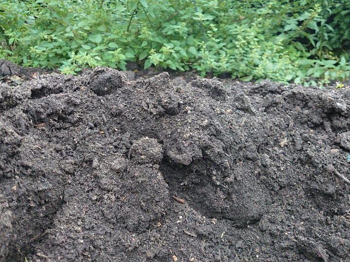 Grow More - Maximising yield, succession planting and creating compost image