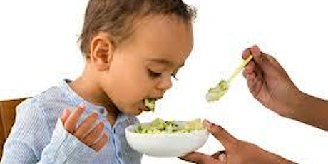Picky Eating Workshop with a Registered Dietitian tickets