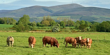 Trade-Offs in Ireland's Climate Change Commitments v's Agri-Food Growth tickets