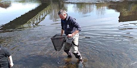 Virtual river life identification talk tickets