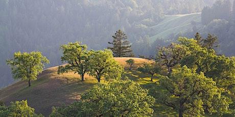 Guided Virtual Hike: Pole Mountain 3-11-21 tickets