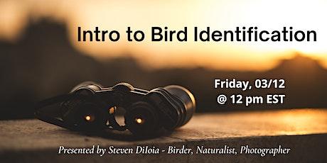 Intro to Bird Identification tickets