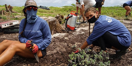Kalaeokaunaʻoa (Kahuku Point) Volunteer Workday tickets