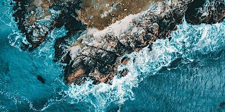 Meet the Scientist - Living Seas: Safeguarding Scotland's Marine Treasures tickets