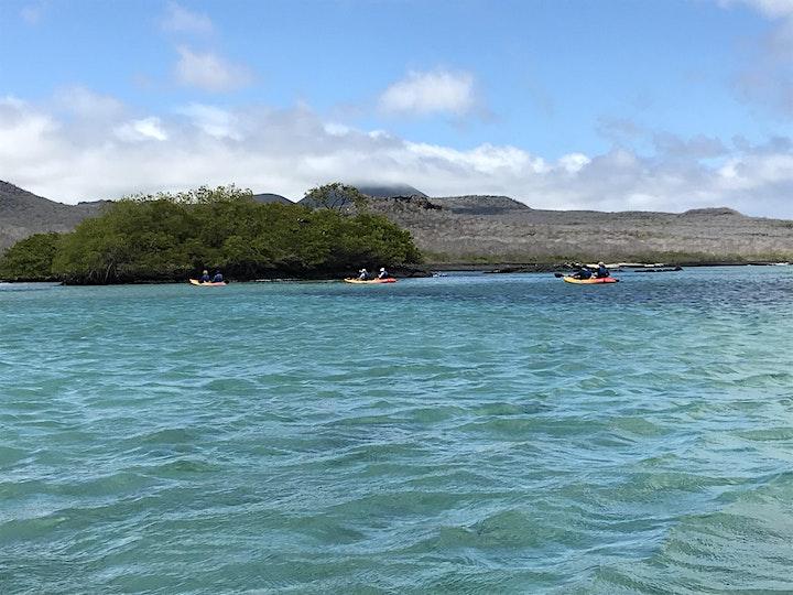 Ecuador - Galapagos and so much more! Come explore Ecuador with us. image