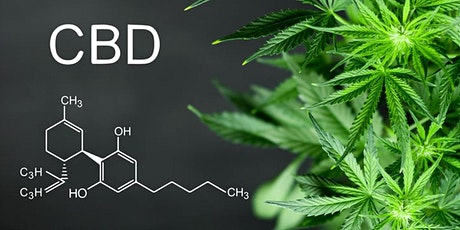 The Benefits of CBD on Your Health &  Your Finances tickets