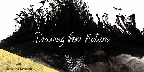 Drawing from nature tickets