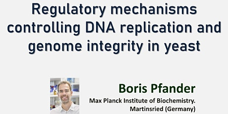 Regulatory mechanisms controlling DNA replication and genome integrity tickets