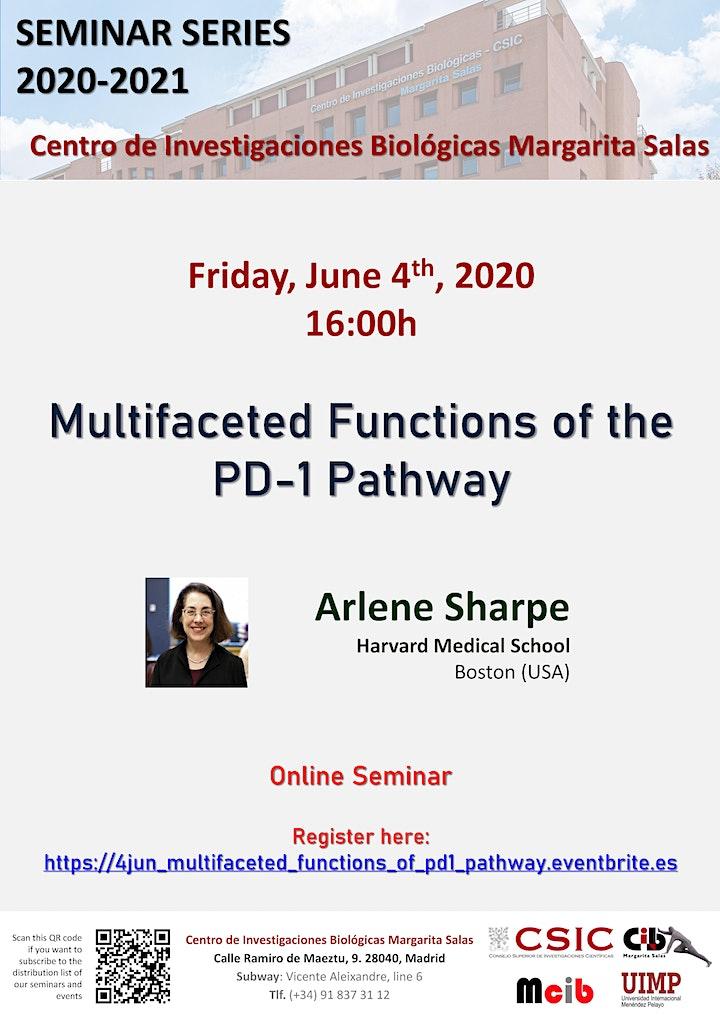Imagen de Multifaceted Functions of the  PD-1 Pathway