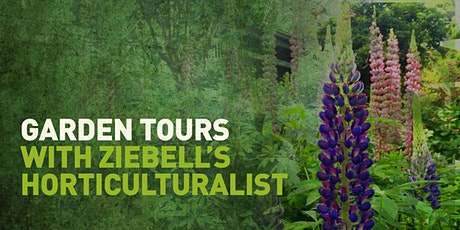 Garden Tours with Ziebell's Horticulturalist tickets