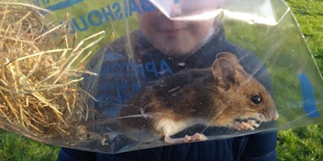 Virtual Mammal identification and monitoring  talk tickets