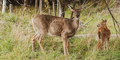 Grow Your Own Deer Food Plot tickets