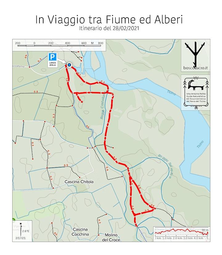 Immagine In Viaggio tra Fiume ed Alberi