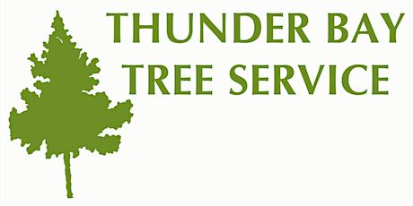 Tree & Shrub Pruning with Thunder Bay Tree Service tickets