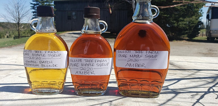 Maple Syrup Experience at Elliott Tree Farm. Weekends through April 11 image