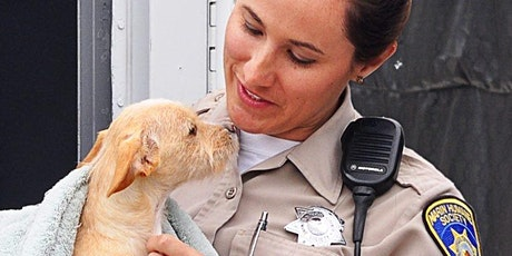 The Link between Animal Abuse and Domestic Violence tickets