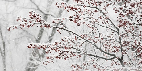 Adult Basic Reading Club: Poems About Winter tickets
