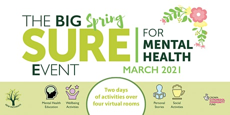 The BIG SURE for Mental Health Event - Social Anxiety tickets