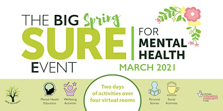 The BIG SURE for Mental Health Event - Managing your Mind: Online tickets