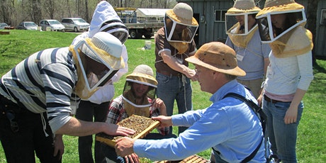 Introductory Beekeeping Course tickets