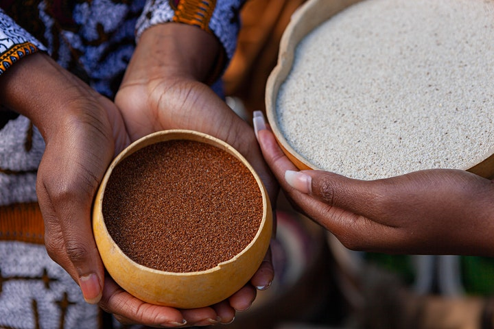 The Origin, The History, and The Uses of Ancestral African Foods image