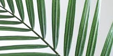 8:00  AM Mass of Palm Sunday on March 28, 2021. tickets