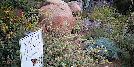 Taller práctico intensivo de jardinería con plantas nativas tickets